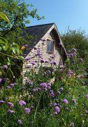 'The Honey House'