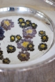 Crystallised Spring Flowers