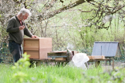 My Dad and his bees in the orchard
