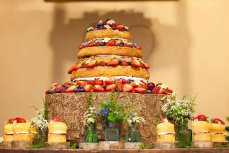 Wedding Cake, 'Middle Coombe Farm', Tiverton (May 2015)