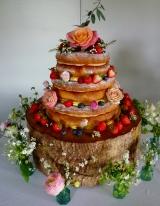 Wedding Cake - Tiverton - April 2016