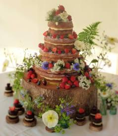 Wedding Cake, 'Cornish Tipi Weddings'. May 2016